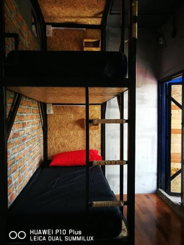 THE BUNK BACKPACKERS HOSTEL by fleur
